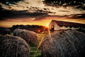 Barn in the Sunset at Ozora by scwl