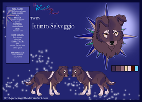 Wild_Model-sheet by Aquene-lupetta