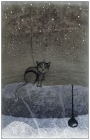 CAT'S SOLITUDE by krecha