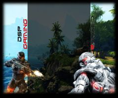 YT BG: DSPGaming Crysis 2 by MTS3