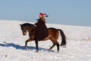 Medieval Winter Noble Horse Trotting III by LuDa-Stock
