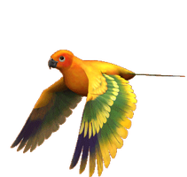 parrot by elevation-world