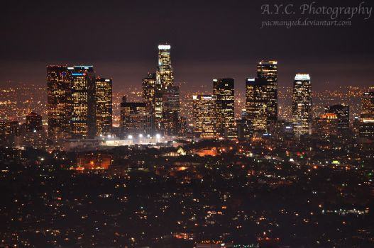 Los Angeles at Night by pacmangeek
