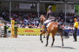 3DE Show Jumping Phase Stock 14 by LuDa-Stock