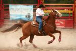 Barrel Racing - II by froggynaan