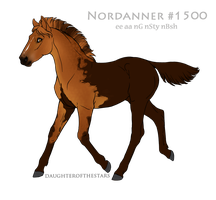 Foal #1500 by NorthEast-Stables