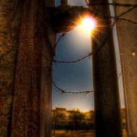 let me out by marikaz