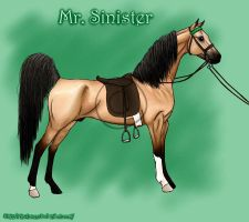 Mr. Sinister - ASB Stallion by codfishing