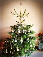 Christmas Tree by MSchneWe