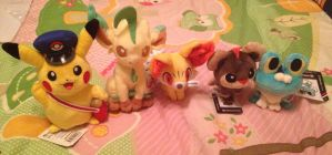 Pokemon Plush Collection Update~~ by Ghibli-and-OtakuNess