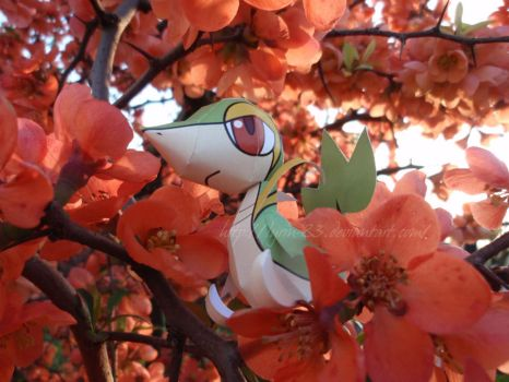 Mini Snivy Papercaft by Lyrin-83
