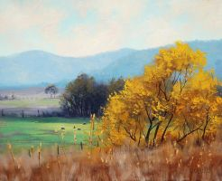 Rural Bathurst , Australia by artsaus