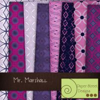 mr marshall-paper street designs by paperstreetdesigns
