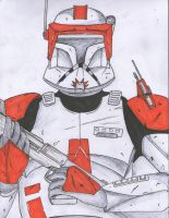 Commander Cody by Funtimes