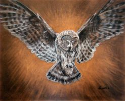Great Grey Owl portrait by Schnellart