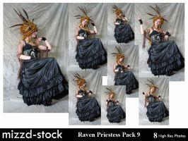 Raven Priestess Pack 9 by mizzd-stock