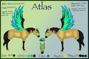 Atlas Reference