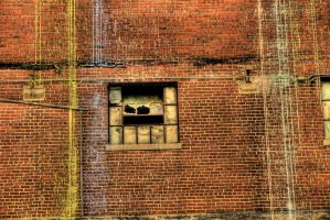 Another brick in the wall by chriskronen