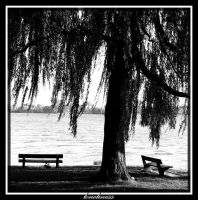 loneliness by lordmaci