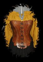 leather corset , bark by Lagueuse