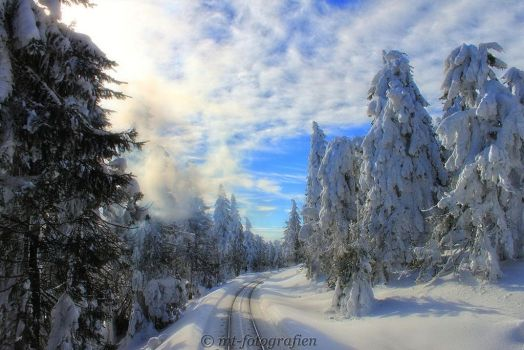 winter wonderland in the resin 7 by MT-Photografien