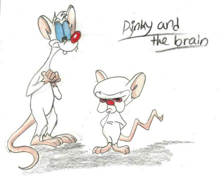 pinky and the brain by hatoola13