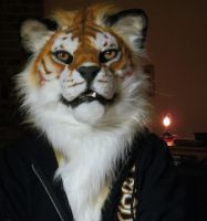 Golden Tiger mask by icecoldsoul