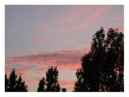 Sky in pink -2- by shadow-kat-ana