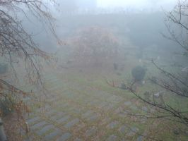 Foggy at the cemetery 43 by rudeturk