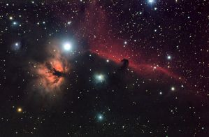 HorseHead and Flame by Gautama-Siddharta