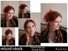 Eastern Emissary P Pack 5 by mizzd-stock