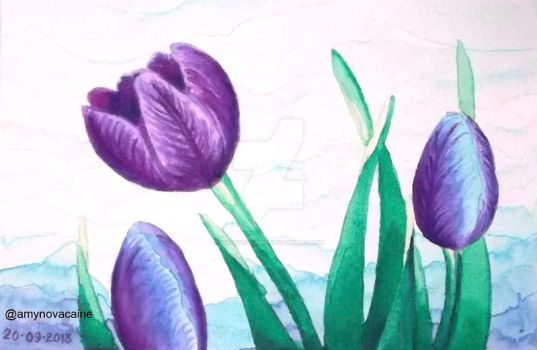 Tulips watercolor 2 by AmyNovacaine