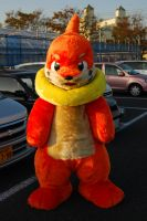 Buizel Fursuit full