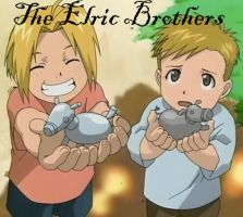 Elric Brothers ID by elric-fans