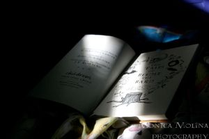Beedle the Bard. by Noctelux