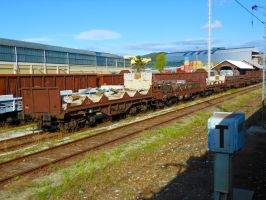 Freight carriages 2 by GladiatorRomanus