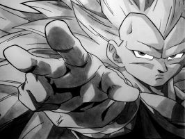 Vegeta Super Sayian 3 by EckoSlime