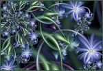 Forget-Me-Not II by Mignon