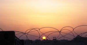 barbed wire sunset by desert-hedgehog