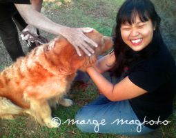 Marge loves Dogs by margemagtoto