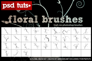 Floral Brushes by SET07
