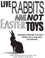 Live Rabbits are NOT Toys by Toraigan