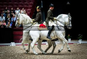 Spanish Riding School 7 by JullelinPhotography