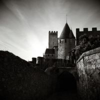 Carcassonne by C-Jook