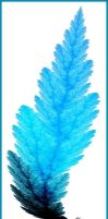 Frost Leaf by sequential