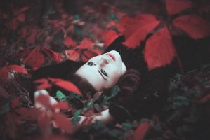 October burns red by Norrington1
