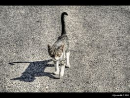 come to mommy... by Iulian-dA-gallery