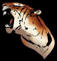 Simplified Tiger. by CraigJohn