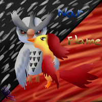 Nar and Flame by pokebulba