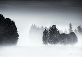 Land Of Mist by JoniNiemela